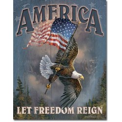Placa metalica - America - Let Freedon Reign - 30x40 cm