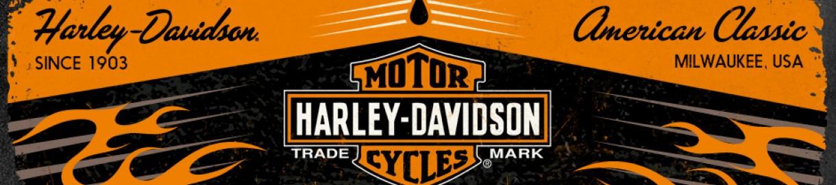 Colectia Harley Davidson